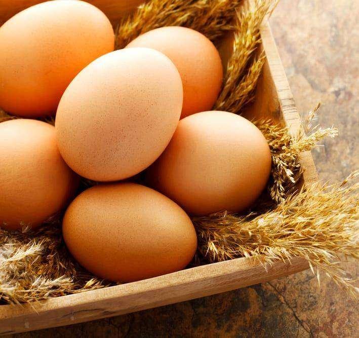 jajka okladka