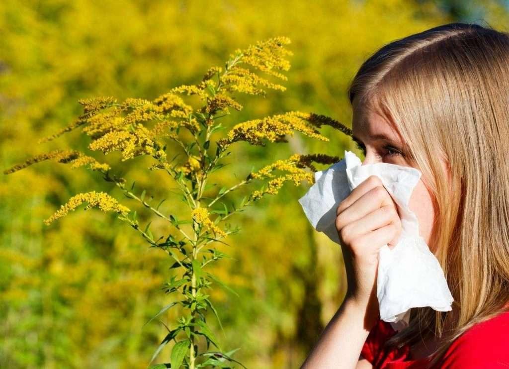 Czy to alergia?