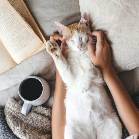 """Książka na weekend: """"Żyj i pozwól żyć"""""""