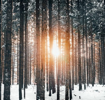 Okulary przeciwsłoneczne na zimę