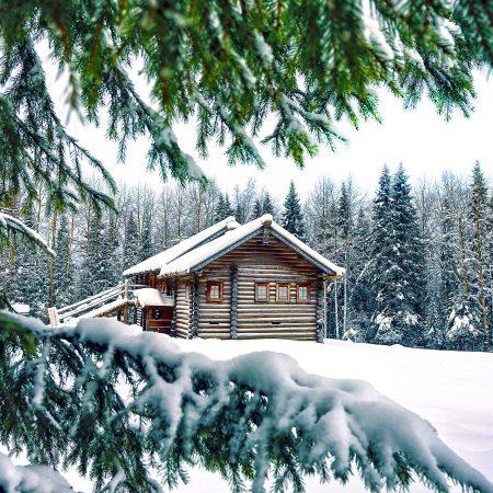 Urodzeni zimą