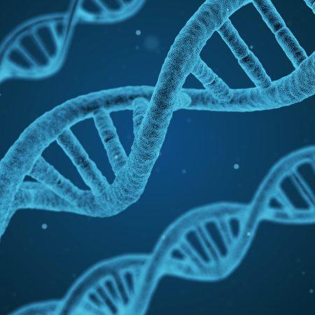 Test DNA na ojcostwo – jak przebiega?