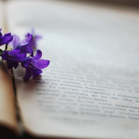 """""""Książka może się stać najlepszym kompanem na trudne czasy"""" – Diane Setterfield"""