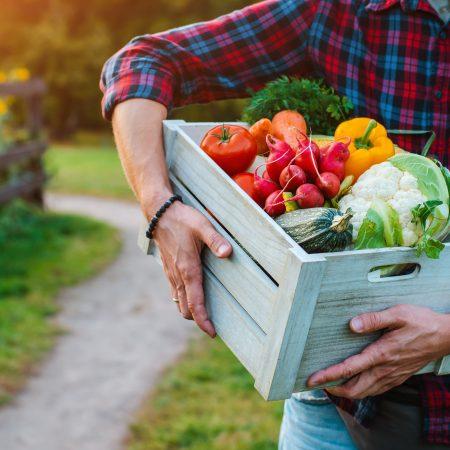 Co jeść jesienią? Produkty sezonowe!