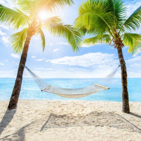 Planowanie to najlepsza część wakacji?