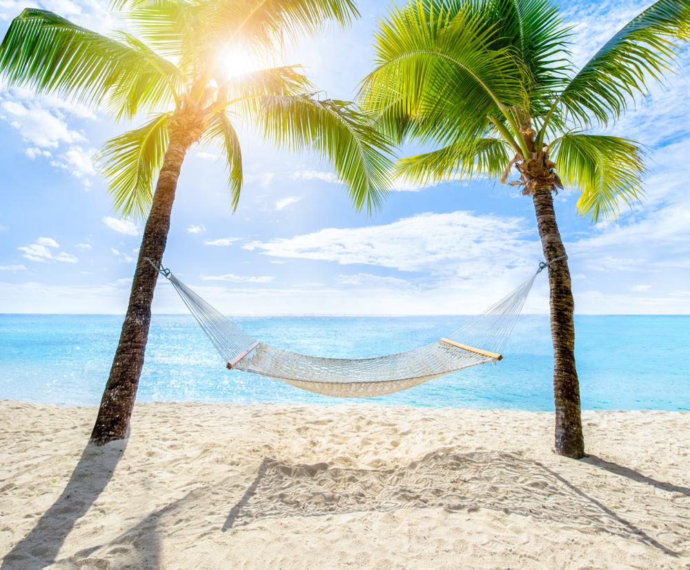 planowanie wakacji