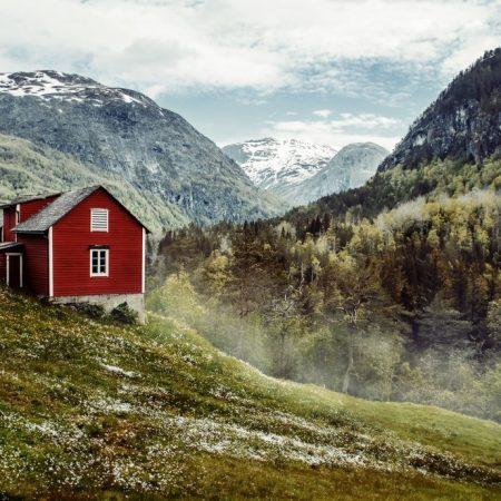 Sylwestrowe śledzie z cytryną po norwesku