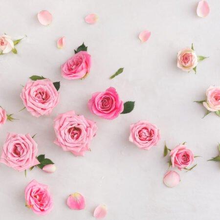 W kosmetyczce: Krem z róży na dzień Dr. Hauschka