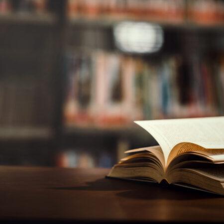 Książka na weekend: W ukryciu